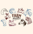 farm animals head of a domestic horse pig goat vector image