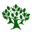 green color family nature tree vector image vector image