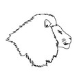 head lion african proud powerful nobility vector image vector image