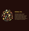 herbal tea ticket vector image vector image