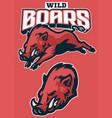 set wild boar sport mascot vector image vector image