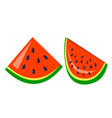 watermelon icon tasty fruit fresh healthy vector image
