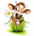 Jersey cow in green grass vector | Price: 3 Credits (USD $3)