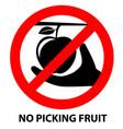 no picking fruit sign symbol on white background vector image vector image