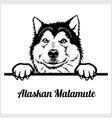 alaskan malamute - peeking dogs - breed face head vector image vector image