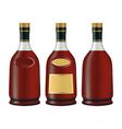 brandy vector image vector image