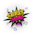 crazy sale discount comic book text pop art vector image vector image