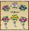 Different flowers bouquets in antique vases vector image vector image