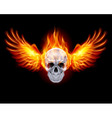 Flaming Chrome metal Skull wings fair 01 vector image vector image