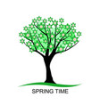 flowering spring tree with leaves vector image