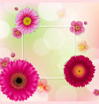 flowers frame with bokeh vector image vector image