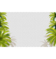 palms transparent background vector image vector image