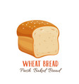 wheat bread icon vector image vector image
