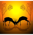 Fighting Antelopes vector image vector image