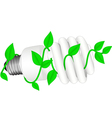 isolated low-energy bulb with leafs vector image