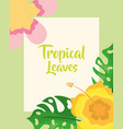 tropical leaves exotic flowers decoration card vector image vector image