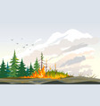 wildfire burning trees nature disaster vector image vector image