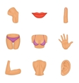 Women body part icons set cartoon style vector image vector image