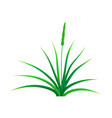field grass icon realistic style vector image