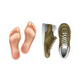 left and right foot soles vector image vector image