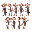 monkey businessman cartoon character dressed in vector image vector image