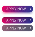 pink and purple apply now buttons isolated on vector image vector image