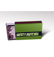 Safety matches vector image vector image