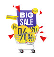 shopping cart sale poster isolated vector image