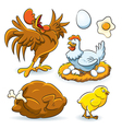 Chicken Collection vector image vector image
