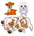 crying deer sad owl and sick horse animal vector image vector image