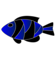 Exotic Fish vector image