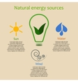 Infographics of natural energy sources vector image vector image