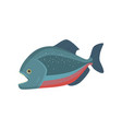 rare fish with transparent head isolated on white vector image