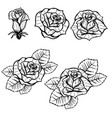 Set of old school tattoo style roses isolated on