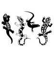 set stylized lizard a collection decorative vector image vector image