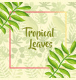tropical leaves label template exotic branches vector image vector image