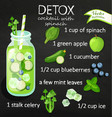 detox cocktail recipe vector image vector image