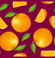 realistic detailed 3d whole orange and slice vector image vector image