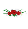 roses and daisies vector image