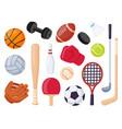 sport equipment cartoon balls and gaming item vector image vector image