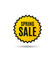 spring sale special offer price sign vector image vector image