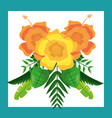 beautiful arrangement flowers ornament tropical vector image