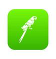 brazilian parrot icon digital green vector image