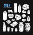 dairy products collection 1 vector image vector image