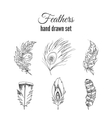 feathers set Hand drawn ethnic elements vector image