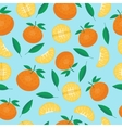 Fruits mandarin seamless patterns vector image vector image
