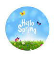 grass and flowers spring ball vector image vector image