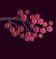 pale blossom elegant floral pattern vector image vector image
