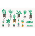 potted plants collection in a loft style vector image