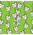 seamless pattern with white roses on green vector image